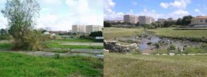 Granja stream before and after