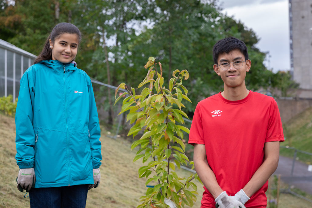 Oslo planting youth